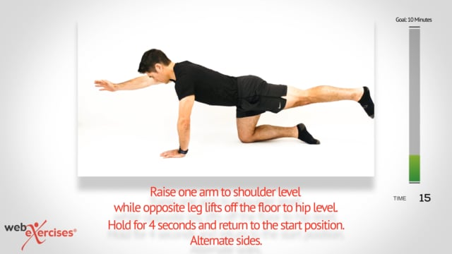 Low back and core strengthening